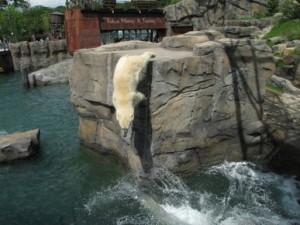 Zoo de Hannover API WAVES (3)